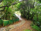 大湖公園白鷺鷥山:大湖公園白鷺鷥山 (31).jpg