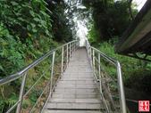 樹林青龍嶺-尖棟山登山步道:青龍嶺尖棟山 (2).jpg
