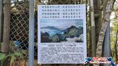 大坑頭嵙山步道(4上3下O形):大坑頭嵙山步道(4上3下O形) (36).jpg
