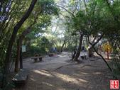 羊稠坑森林步道:羊稠坑森林步道 (6).jpg