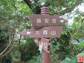 樹林青龍嶺-尖棟山登山步道:青龍嶺尖棟山 (11).jpg