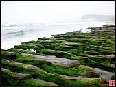 綠色礁岩海岸:老梅綠色礁岩海岸 (7).jpg