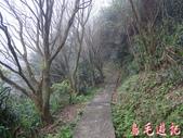 基隆紅淡山步道:基隆紅淡山步道 (8).jpg