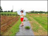 2013向陽農場初夏:向陽農場 (7).jpg