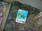 大湖公園白鷺鷥山:大湖公園白鷺鷥山 (33).jpg