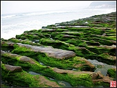 綠色礁岩海岸:老梅綠色礁岩海岸 (8).jpg
