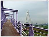 新北大橋&幸福水漾公園:新北大橋&幸福水漾公園 (54).jpg