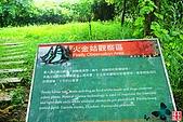 和美山:碧潭風景區和美山步道 (16).jpg