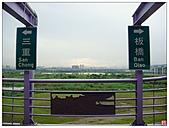 新北大橋&幸福水漾公園:新北大橋&幸福水漾公園 (55).jpg