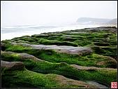 綠色礁岩海岸:老梅綠色礁岩海岸 (9).jpg