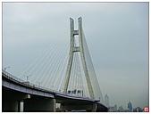 新北大橋&幸福水漾公園:新北大橋&幸福水漾公園 (56).jpg