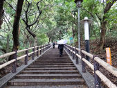 虎頭山步道:虎頭山步道 (5).jpg