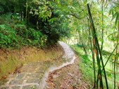 大湖公園白鷺鷥山:大湖公園白鷺鷥山 (34).jpg