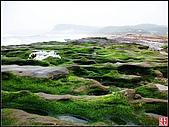 綠色礁岩海岸:老梅綠色礁岩海岸 (10).jpg