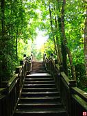 仙跡岩親山步道:仙跡岩步道 (15).jpg