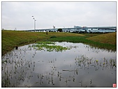 新北大橋&幸福水漾公園:新北大橋&幸福水漾公園 (58).jpg