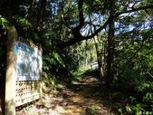 猴山岳步道香草園:猴山岳步道香草園 (4).jpg