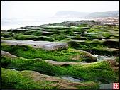綠色礁岩海岸:老梅綠色礁岩海岸 (11).jpg