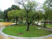 大湖公園白鷺鷥山:大湖公園白鷺鷥山 (4).jpg