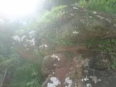 福隆東林靜修佛陀山:DSC_1298.JPG