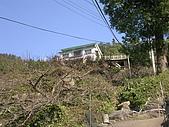 2008.12.7馬拉邦山:DSCN9702.JPG