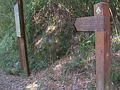 2008.12.7馬拉邦山:DSCN9611.JPG