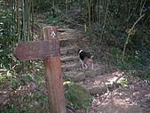 2008.12.7馬拉邦山:DSCN9612.JPG
