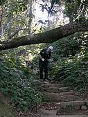 2008.12.7馬拉邦山:DSCN9617.JPG